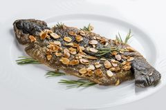 Seabass grill on a white plate. On a white background stock photo