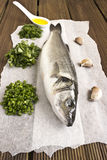 Seabass with herbs Royalty Free Stock Photography