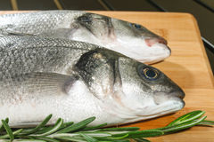 Seabass with lemon and rosemary Royalty Free Stock Photo