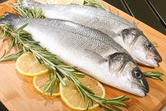 Seabass with lemon and rosemary Royalty Free Stock Image