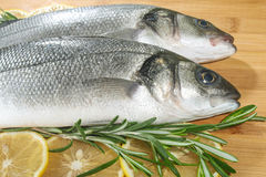 Seabass with lemon and rosemary Royalty Free Stock Photography