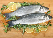 Seabass with lemon and rosemary Stock Image
