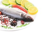 Seabass on plate with citrus and pepper. Royalty Free Stock Photos
