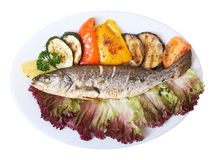 Seabass with vegetables Stock Photography