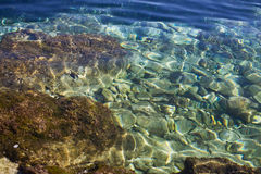 Seabed Stock Image