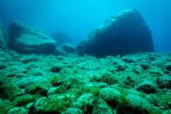 Free Seabed In The Mediterranea Sea Stock Photos - 117958773