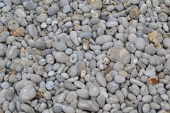 Seabed stones stock photography