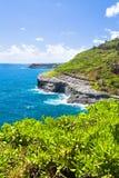 Seabird habitat Kauai Hawaii Stock Photography