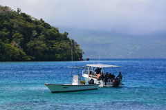 Seaboat de voyageur Photo stock