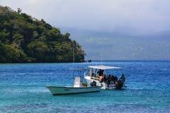 Seaboat del viajero foto de archivo