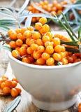 Seabuckthorn莓果 库存图片