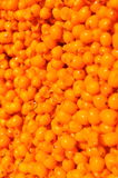 Seabuckthorn Stock Photos