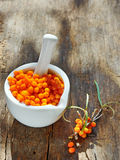 Seabuckthorn Berries Stock Image