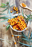 Seabuckthorn Berries Stock Photo
