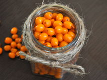 Seabuckthorn. In jar , Background from sea-buckthorn berries (Hippophae rhamnoides). This product contain plenty of vitamin C Stock Images