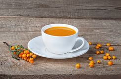 Seabuckthorn juice and berries Royalty Free Stock Photography