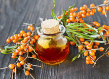 Seabuckthorn oil. Bottle with berries branches Royalty Free Stock Images