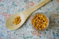 Seabuckthorn som är blandad med honungcloseupen Royaltyfri Fotografi