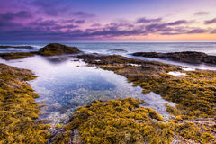Seacape nel tramonto Immagini Stock