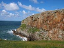Seacliffs em Anglesey, Gales fotografia de stock royalty free