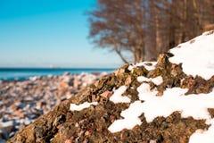 Seacoast με τους βράχους και το χιόνι όμορφος ηλιόλουστος χ&epsilo Στοκ εικόνα με δικαίωμα ελεύθερης χρήσης