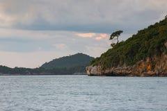 Seacoast ωκεάνιος ορίζοντας με το νησί και το μικρό δέντρο Στοκ Φωτογραφία