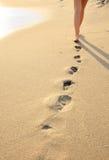 seacoast девушки идя Стоковое Фото