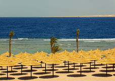 seacoast парасолей пляжа Стоковое Изображение