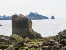 Seacoast i widok zatoka Fotografia Royalty Free