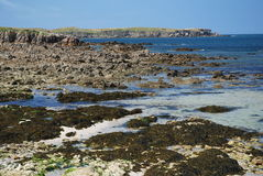 Seacoast på halvön Quiberon royaltyfri fotografi