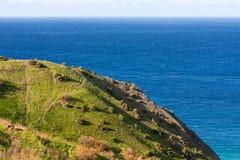 Seacoast on small island Gozo, Malta. Stock Photo