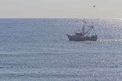 Seafaring Fishing Trawler Stock Photo
