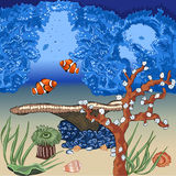 The seafloor with coral reefs. Inhabitants of the ocean. Nature. Undersea world. Corals, algae, shells and fish. Clown fish Royalty Free Stock Images