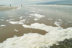 Seafoam on the beach  afther a storm Stock Image