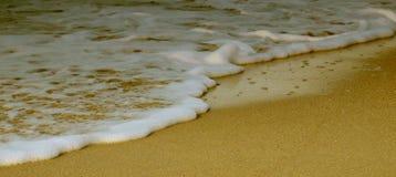 Seafoam in het strand Stock Foto
