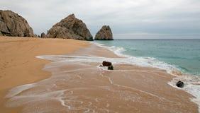 Seafoam na rozwodzie i kochankowie Wyrzucać na brzeg na Pacyficznej stronie ziemie Kończymy w Cabo San Lucas w Baj Kalifornia Mek obraz royalty free
