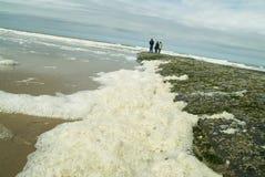 Seafoam op het strand afther een onweer Royalty-vrije Stock Fotografie