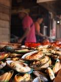 Seafod tailandese fotografia stock