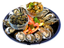Seafood. Some seafood on the party Stock Photos