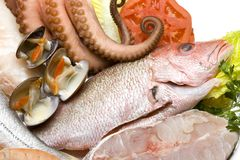 Seafood 2 Stock Photography