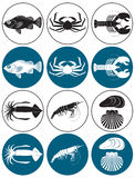 Seafood. The figure shows the marine animals Royalty Free Stock Photos