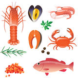 Seafood. Highly detailed seafood icons set vector illustration