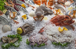 Seafood Royalty Free Stock Photography
