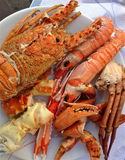 Seafood. Differnt kinds of seafood on one plate stock image