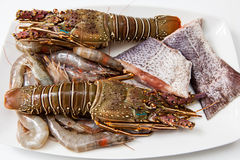 Seafood Royalty Free Stock Image