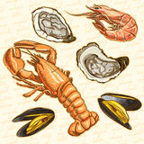 Seafood. Set lobster, oysters, mussels and shrimp Royalty Free Stock Photos