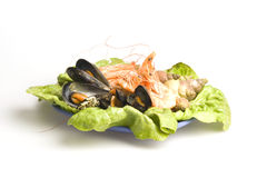 Seafood. Fresh and delicious seafood meal: mussels, shrimps, seashells ( whelks Stock Image