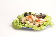 Seafood. Fresh and delicious seafood meal: mussels, shrimps, seashells ( whelks Stock Images