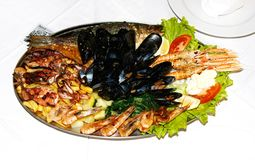 Seafood. A seafood special with a large variety of seafood, fish and oyster Stock Photo