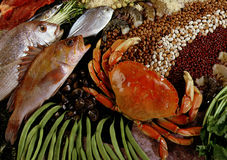 Free Seafood Royalty Free Stock Images - 64969